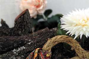 leña como biomasa